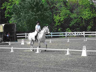 Gemma and Timmy compete in Dressage